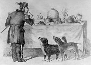 Bummer en Lazarus de honden van Norton