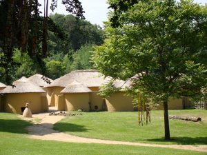Afrika Museum12